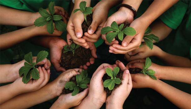 10 livros que ensinam as crianças a cuidar do Planeta